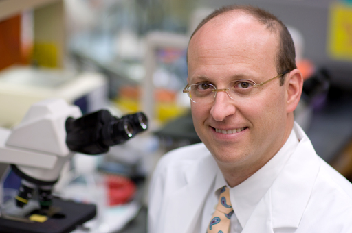 Andrew Davidoff, M.D., of St. Jude is senior author of a study demonstrating that gene therapy can reduce disabling, painful bleeding episodes in patients with hemophilia B.