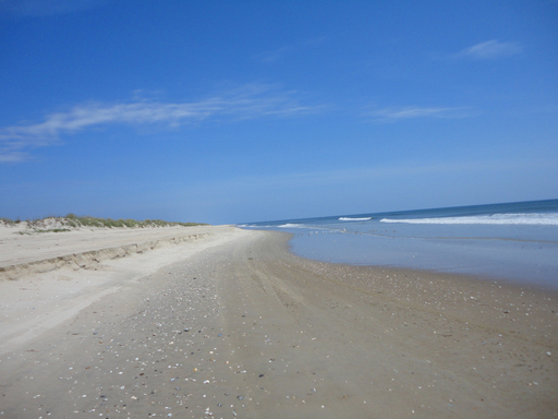 TripAdvisor's 2012 Travelers' Choice Beach Destinations awards reveal that the shores of Virginia Beach, Virginia are enjoyed by many. (A TripAdvisor traveler photo)