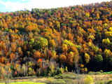 49278-01-new-hampshire-fall-foliage-sm
