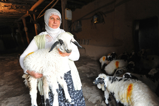Diyarbakir, a microcredit client of Whole Planet Foundation partner Turkish Grameen Microcredit Program, used her loan to expand her goat farming business in Turkey. Photo courtesy of Diane Bondareff.