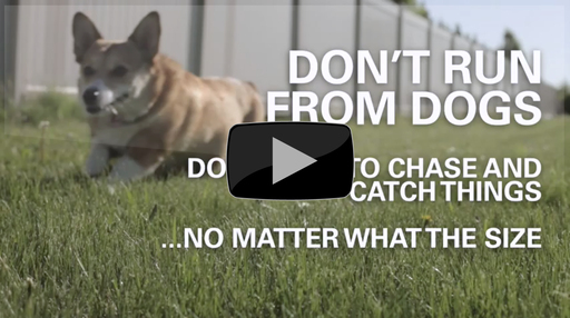 State Farm® - Dog Bite Prevention: The Chase