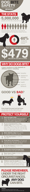 Vertical format for dog bite safety infographic