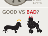 49916-dog-bite-vertical-infographic-sm
