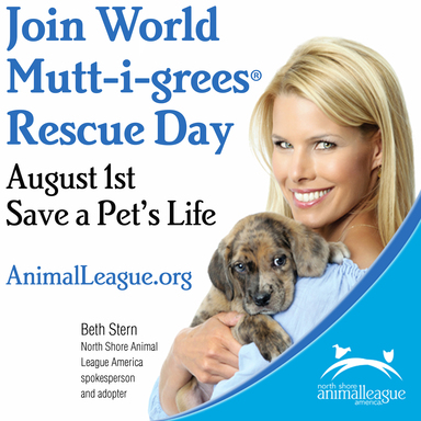 World Mutt-i-grees Rescue Day Print Ad