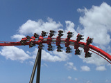 51450-x-flight-from-below-twisting2-sm