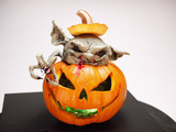 Food-network-halloween-wars-season-2-sm