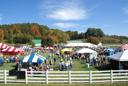 A view from the road of the 2010 Farm Festival