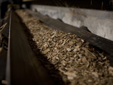 Wood-chips-fuel-eastern-illinois-university-biomass-boiler-sm