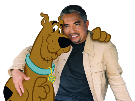Scooby-Doo and Cesar Millan