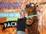 Cesar-millan-and-scooby-doo-sm