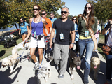 Cesar-millan-dog-owners-pack-walk-4708-sm