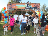 First-annual-scooby-doo-and-cesar-millan-national-family-pack-walk-sm