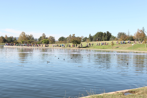 Over a thousand dog owners walk Lake Balboa in Los Angeles for the Scooby-Doo and Cesar Millan National Family Pack Walk.