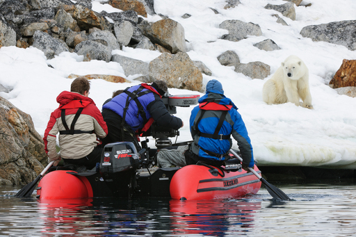MacGillivray Freeman Films Crew filming polar bear as part of IMAX® ''To The Arctic 3D'' film to be distributed in 2012.  © 2011 Warner Bros. Entertainment Inc. ToTheArctic.com