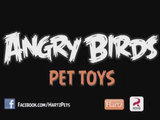 Angry-birds-sg-sm