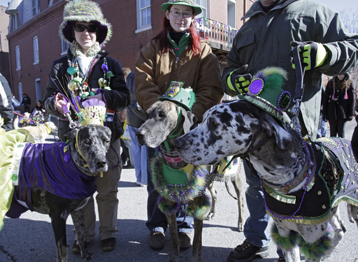 Thousands of costumed dogs and their owners celebrated their Love for the Smell of Bacon during the Beggin'® Pet Parade, one of the world's largest pet events