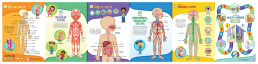 Tag Human Body Discovery Pack from LeapFrog