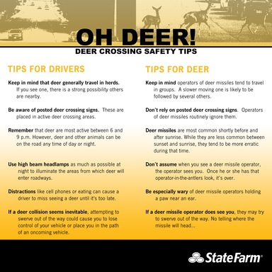 Oh Deer! Deer Crossing Safety Tips