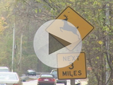 56788-video-deer-sign-sm