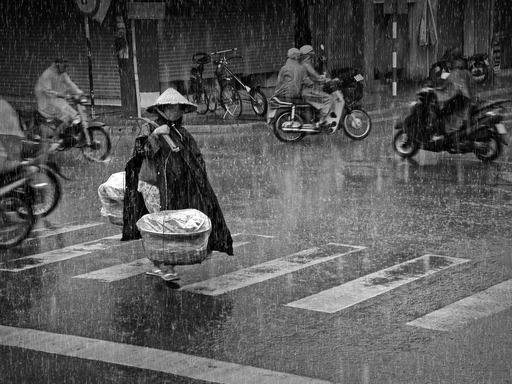 """Rainy Afternoon"" by Truong Minh Dien, Vietnam. Grand Prize. A woman transports potatoes to a local market. Her earnings help feed two children and her husband."