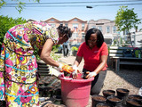 State Farm employee Naomi Johnson joined local residents for the LISC NYC/State Farm Volunteer Day in a community garden in Brooklyn as part of LISC NYC's Green and Healthy Neighborhoods program.