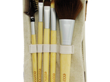 Ecotools-6-peice-brush-set-sm