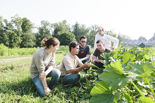 The International Culinary Center announces culinary arts program in NY with inaugural farm-to-table concentration in collaboration with Blue Hill and Stone Barns Center for Food and Agriculture.