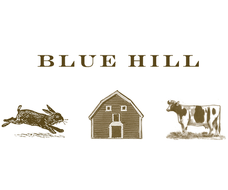 Blue HIll logo
