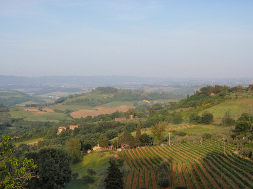 TripAdvisor's 2012 Travelers' Choice Wine Destinations awards named Tuscany the top spot in Europe. (A TripAdvisor traveler photo)