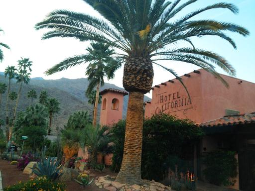 Hotel California, Palm Springs, California - Best Hotel for Service in U.S. (A TripAdvisor traveler photo)