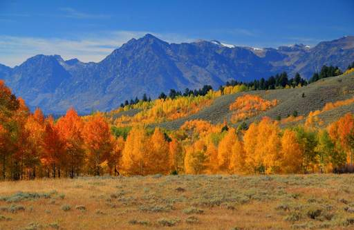 TripAdvisor survey reveals 86 percent of Americans are planning to travel this fall. (A TripAdvisor traveler photo)