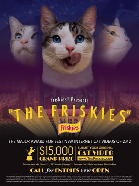 Submit your original cat video at www.TheFriskies.com