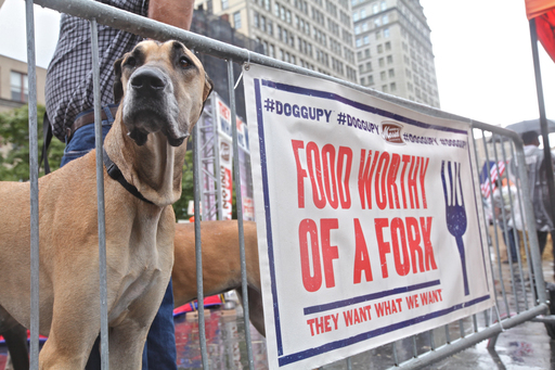 Merrick Pet Care announced a donation of 250,000 bowls of dog food to shelters served by the Mayor's Alliance for NYC's Animals during the Doggupy protest for real food.