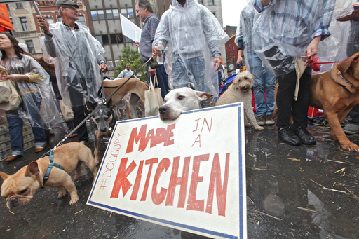 Protestors rallied for better food during #Doggupy, where Merrick Pet Care announced a donation of 250,000 bowls of dog food to the Mayor's Alliance for NYC's Animals.