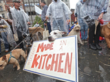Protestors-rallied-better-food-doggupy-merrick-pet-care-sm