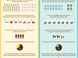 58293-digestive-health-infographic-sm