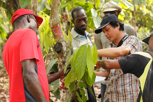 Hussin Bin Purung, a Mars cocoa expert, meeting with farmers on the demonstration plot near Koda, Cote d'Ivoire