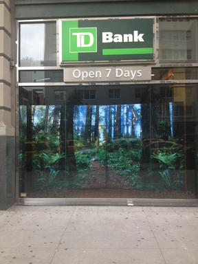 At the TD Bank store at 14th Street and 5th Avenue in Manhattan, New Yorkers can interact with a virtual wall of forests and learn about the importance of forest conservation.