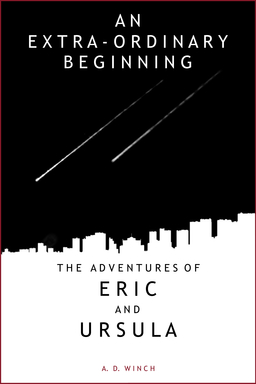 An Extra-Ordinary Beginning Book Cover