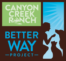 Better Way Project Logo