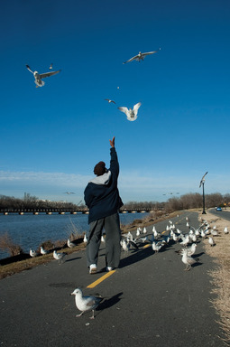 Feeding Gulls- Gary Hedgepath, who grew up in Anacostia, visits Anacostia Park daily to feed the seagulls. Photo by Susana Raab, Anacostia Community Museum.