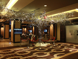 59345-horseshoe-casino-poker-room-tree-sm