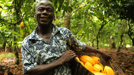 Ghana - the second largest exporter of cocoa in the world
