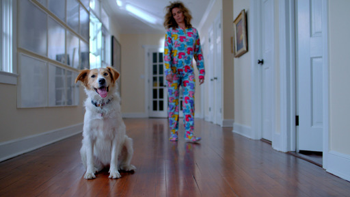 Natalie Morales and her shelter dog Zara show audiences the close relationship you can have with a shelter pet in a new PSA.