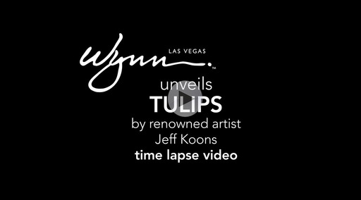 Time lapse video of Tulips installation at Wynn Las Vegas