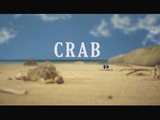 Crab-video-screen-sm