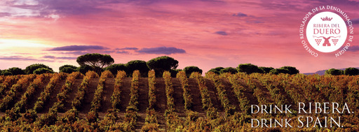 With an extreme climate perfectly suited for quality grape-growing and ripening, Ribera del Duero wines represent the ultimate expression of Spain's most noble red grape: Tempranillo.