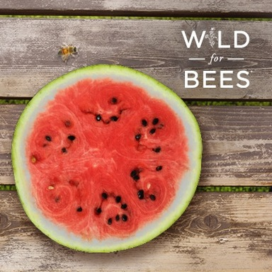 Watermelon -- a pollinated food!
