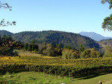 63164-01-pride-mountain-vineyards-st-helena-california-sm