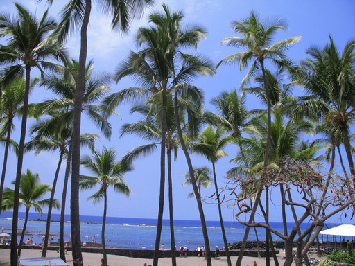 2013 TripAdvisor Travelers' Choice Awards for Destinations on the Rise: Kailua-Kona, Hawaii – #1 U.S. (A TripAdvisor traveler photo)